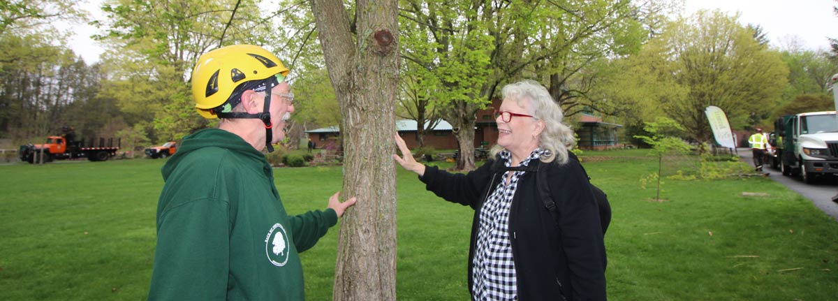 professional arborist speaks with a consumer about proper tree care