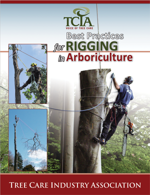 Best Practices for Rigging in Arboriculture