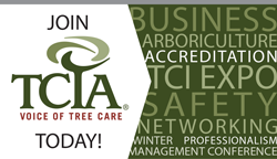 JOIN TCIA
