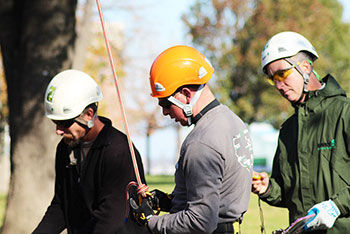 Certified Treecare Safety Professional (CTSP) program